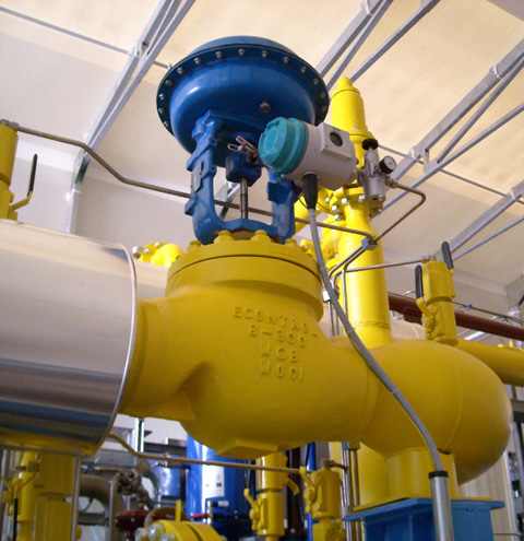 econtrol globe control valve1300