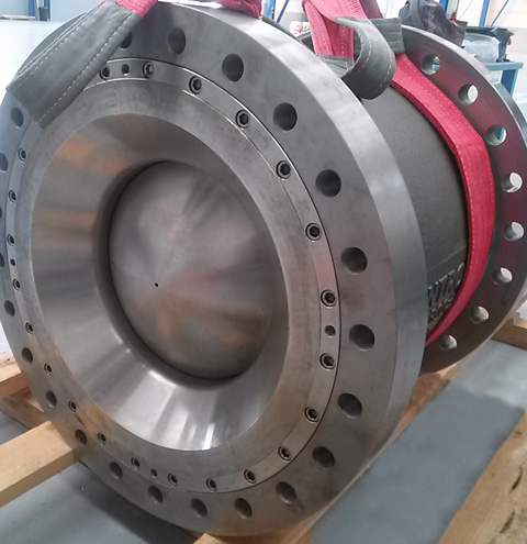 econtrol nozzle check valve