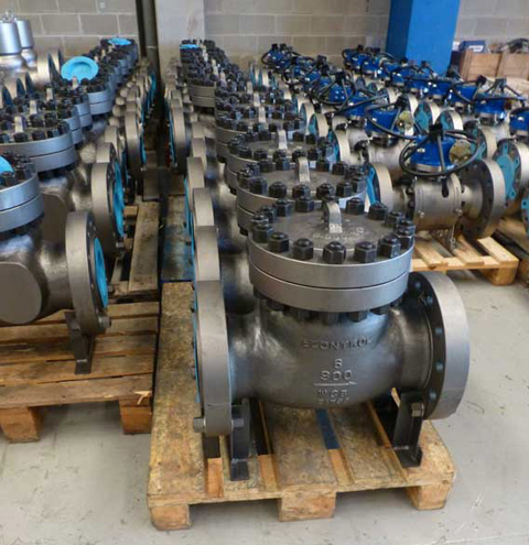 econtrol swing check valve1